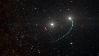 Photo of In the Milky Way found a black hole closest to Earth