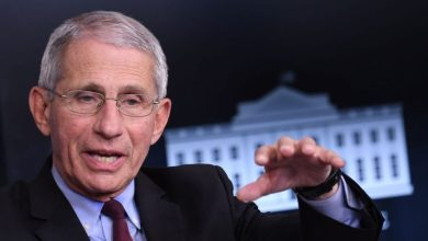 Photo of Anthony Fauci praises Donald Trump