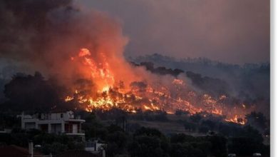 Photo of Wildfires rage in Greece