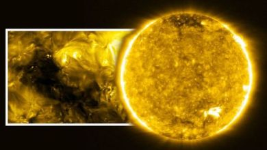 Photo of European probe has taken the most detailed pictures of the Sun