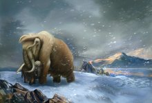 Photo of Mammoths: their past and future
