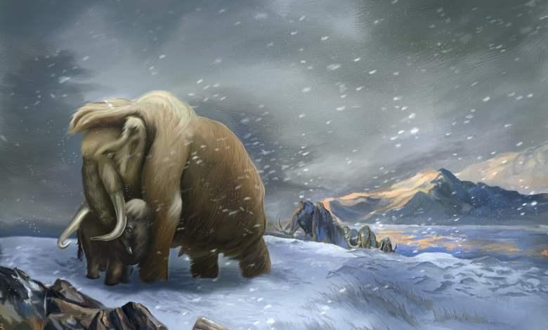 Mammoths 2
