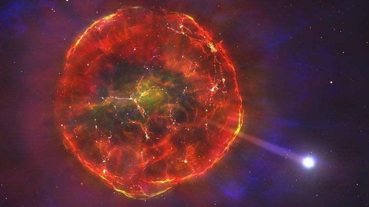 Surviving supernova explodes across the galaxy