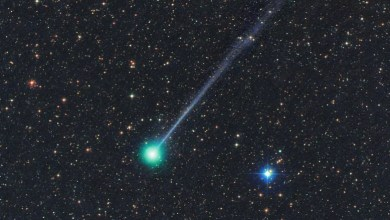 Photo of The brightest comet in the last 23 years appeared in the sky (VIDEO from ISS)