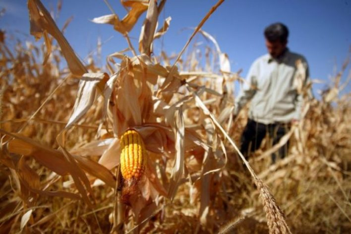 UN report warns climate change threatens global food security