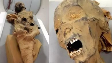 "Photo of Archaeologists solved the mystery of the ""screaming mummy"" from Luxor"
