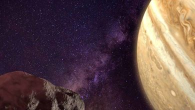 Photo of Probably Bee-Zed is the oldest object in the solar system