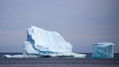 Photo of Iceberg the size of Manhattan breaks off a Canadian glacier