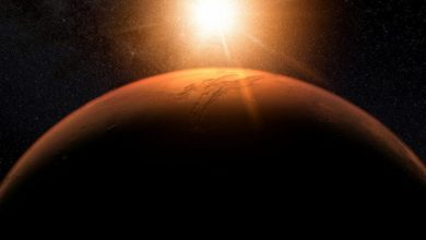 Photo of Research: Bacteria may survive travel between Earth and Mars