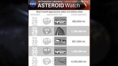 Photo of Five asteroids approaching Earth this week
