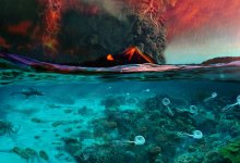 Photo of CO2 blamed for greatest extinction in Earth history