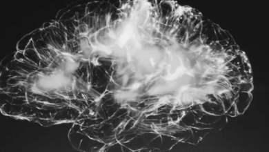 COVID 19 patients experience strange brain abnormalities