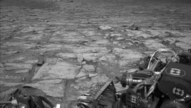 Photo of Curiosity: A Beautiful Day on Mars