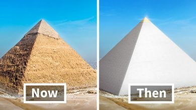 Photo of Where is the golden top of the Great Pyramid?