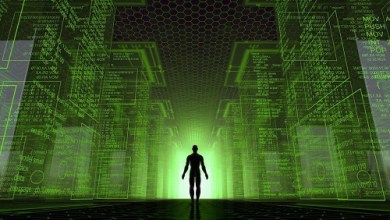 We live inside a simulation created by alien computers