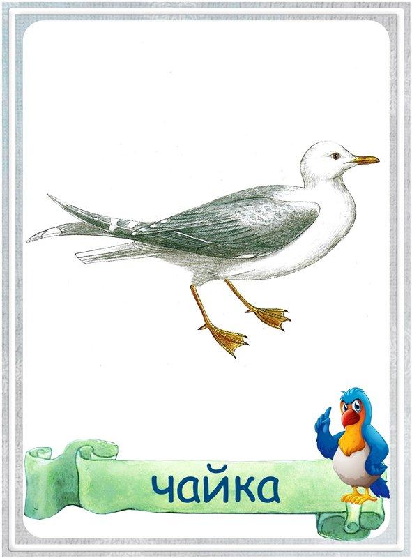 Александре месяц, перелетные птицы картинки с надписью