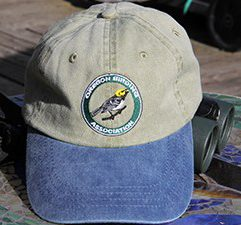 OBA-hat