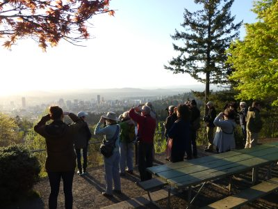 Birders at Pittock Mansion, photo by Diana Byrne