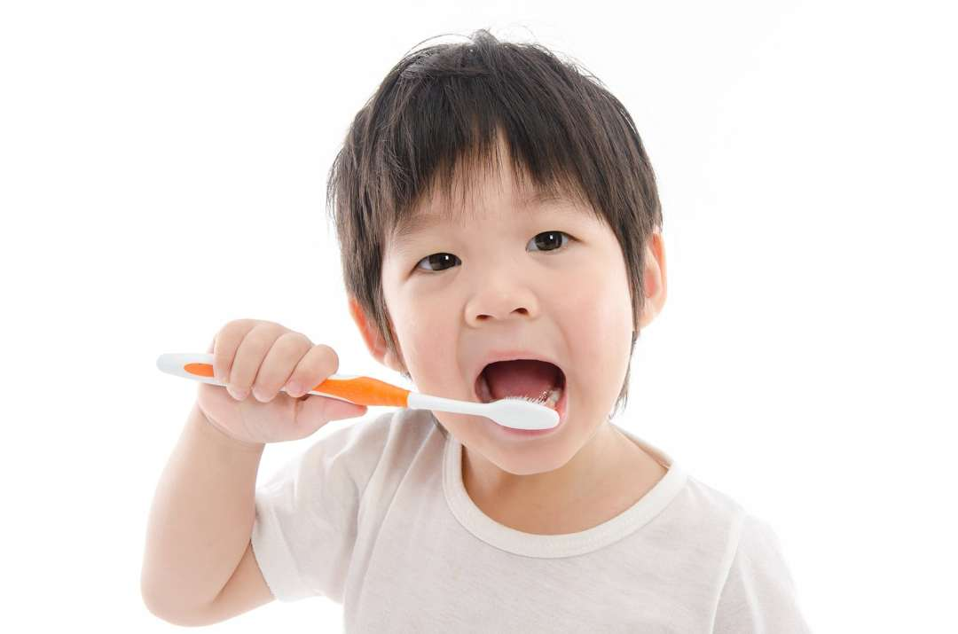your child first dental visit - Our Services