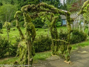 Moss Covered Outdoor Wedding Arch