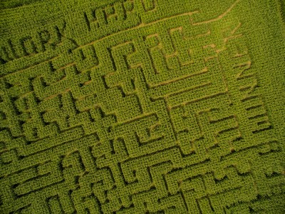 Kilchis River Pumpkin Patch & Corn Maze opening up 2nd weekend in October.
