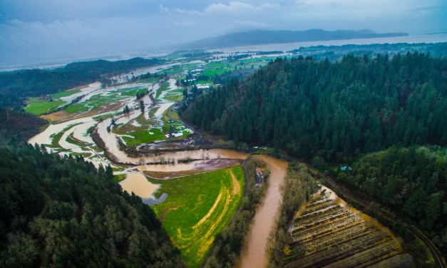Epic Floodwaters shapes Oregon Coastal Flowers