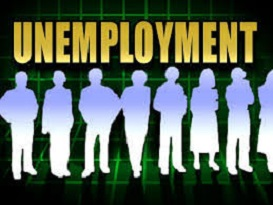 Job Vacancy Survey