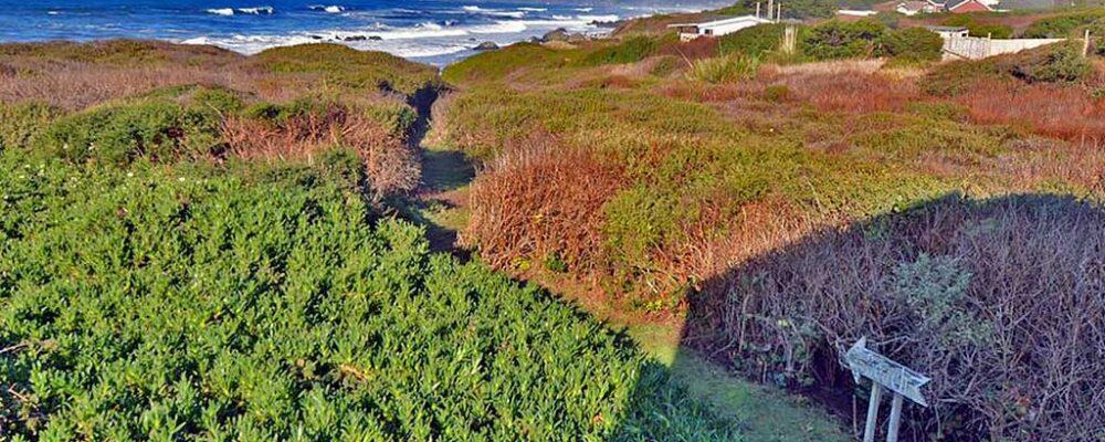 Path to Beach Land's End Beach House