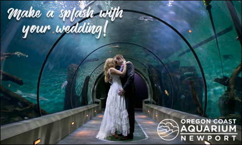Oregon Coast Weddings Oregon Beach Wedding Venues Amp Vendors