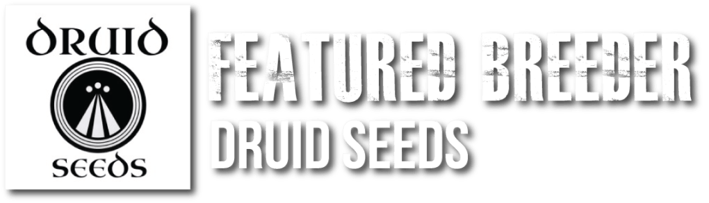 Cannabis Seeds | Oregon Elite Seeds | Top Ranked Cannabis