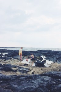 Tide Pools at Two Steps