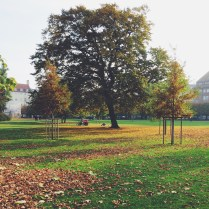 Kongens Have - Fall is fabulous in Copenhagen