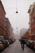 Copenhagen Denmark Fog Winter