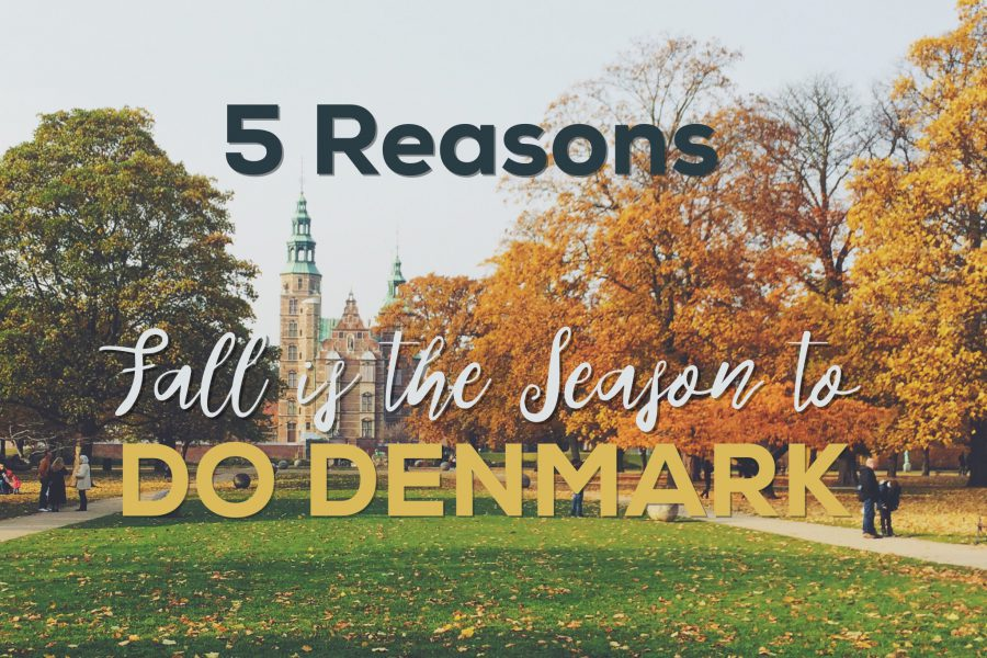 Do Denmark in the Fall - 5 reasons to visit this Autumn