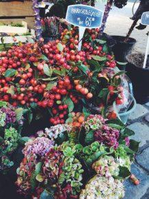 Copenhagen color for Autumn
