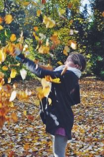 Colorful piles of leaves in Assistens Kirkegård
