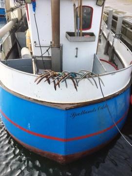 Sjællands Odde Odsherred Havn Fishing Boats | 10 Darling Towns in Denmark You Don't Want to Miss | via Oregon Girl Around the World