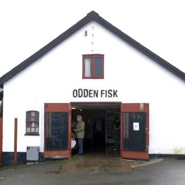 Sjællands Odde Odsherred Havn | Odden Fisk Fish Market | 10 Darling Towns in Denmark You Don't Want to Miss | via Oregon Girl Around the World