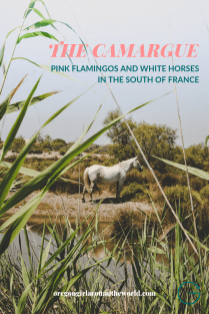 Exploring the Camargue Region in the South of France | Finding Flamingos, White Horses and Pretty Towns | Oregon Girl Around the World
