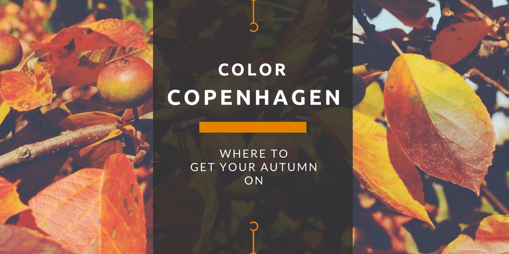 Copenhagen Color: Where to Get Your Autumn On
