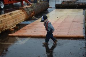 Little Logger rain