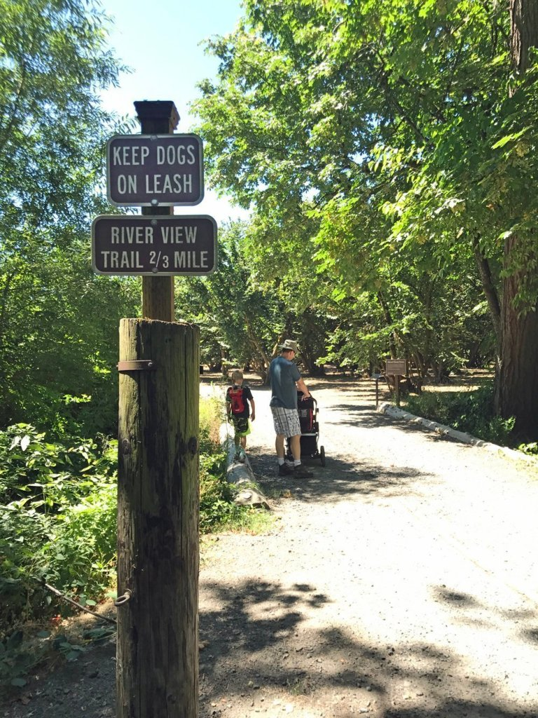 Dorris Ranch trail through the hazelnut orchards
