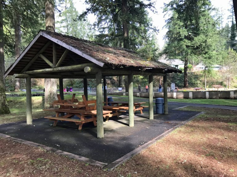 Picnic shelter at Leaburg Fish Hatchery