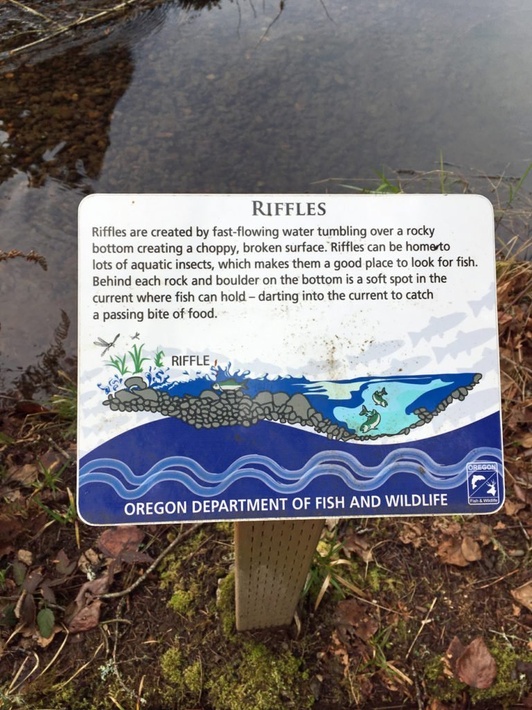 Interpretive Trail sign at Leaburg Fish Hatchery