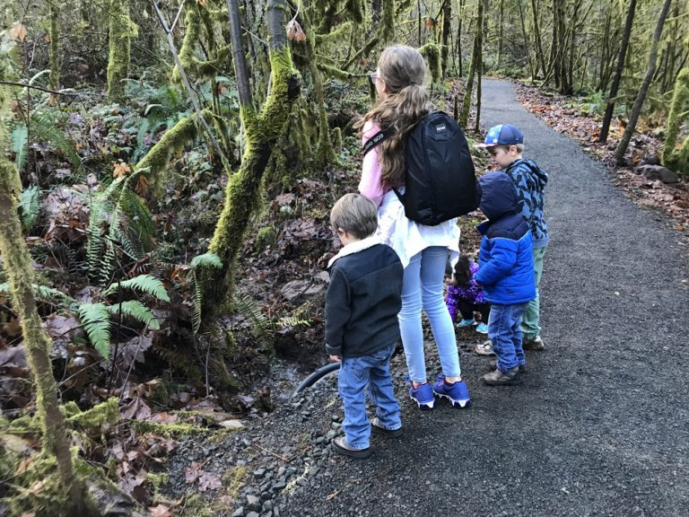 Kids on hiking trail throwing rocks into a stream.