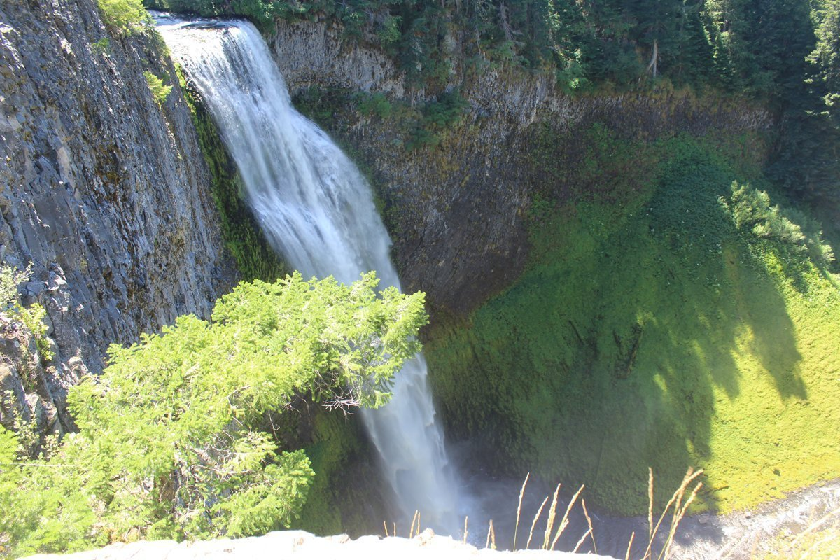 Salt Creek Falls from the lower viewpoint