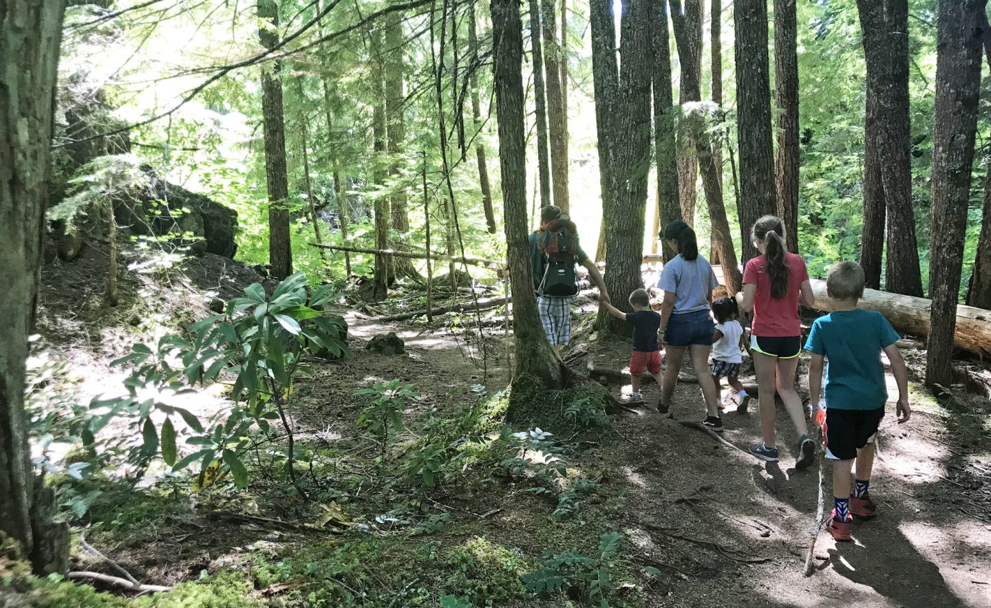 The trail at the start of Proxy Falls is easy and wide, with large Douglas fir trees overhead. It's a waterfall hike for kids near eugene