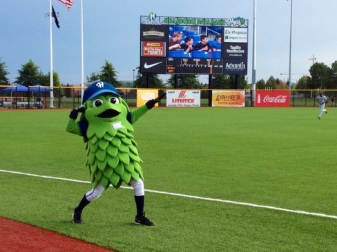 Image result for hillsboro hops