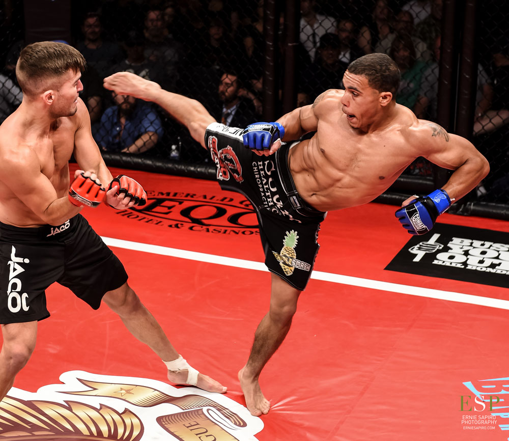 Image result for journey newson mma