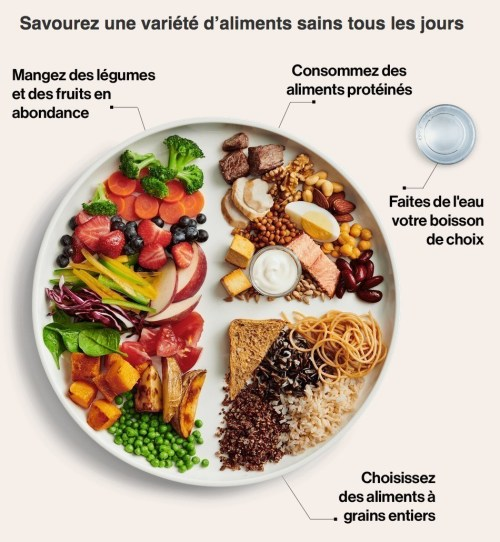 Guide alimentaire canadien, 2019